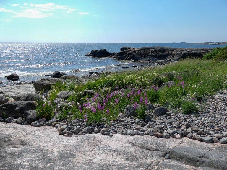 Read more about the article Pirttisaari – helmi Porvoon saaristossa